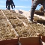 construction ecologique paille