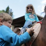 location poneys ariege